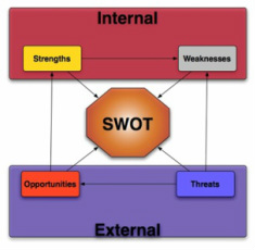 SWOT Analysis - Business Principles and the Role of ...